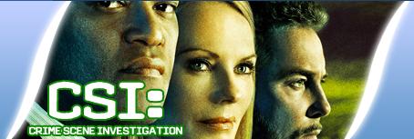 CSI: Crime Scene Investigation 15x07